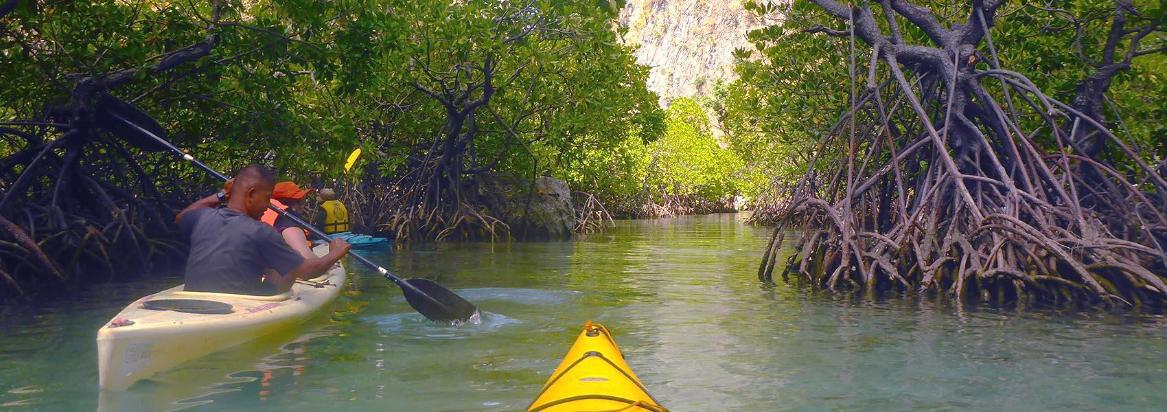 Calamian Kayak & Snorkel Sea Safari