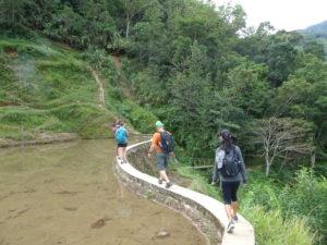 Hapao hike