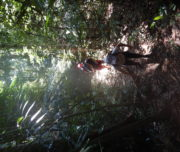 Hike waterfall